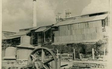 Vagones cargados de caña de azúcar en las afueras de un central azucarero