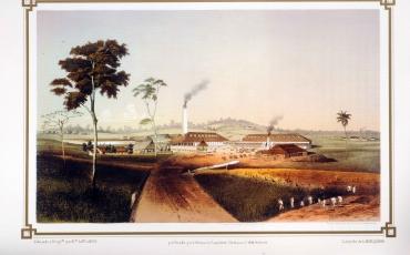 Ingenio Santa Teresa, Agüica, Matanzas, 1855-1857
