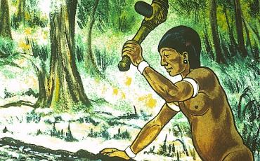 Hacha Petaloide con mango de madera en la fabricación de las canoas.