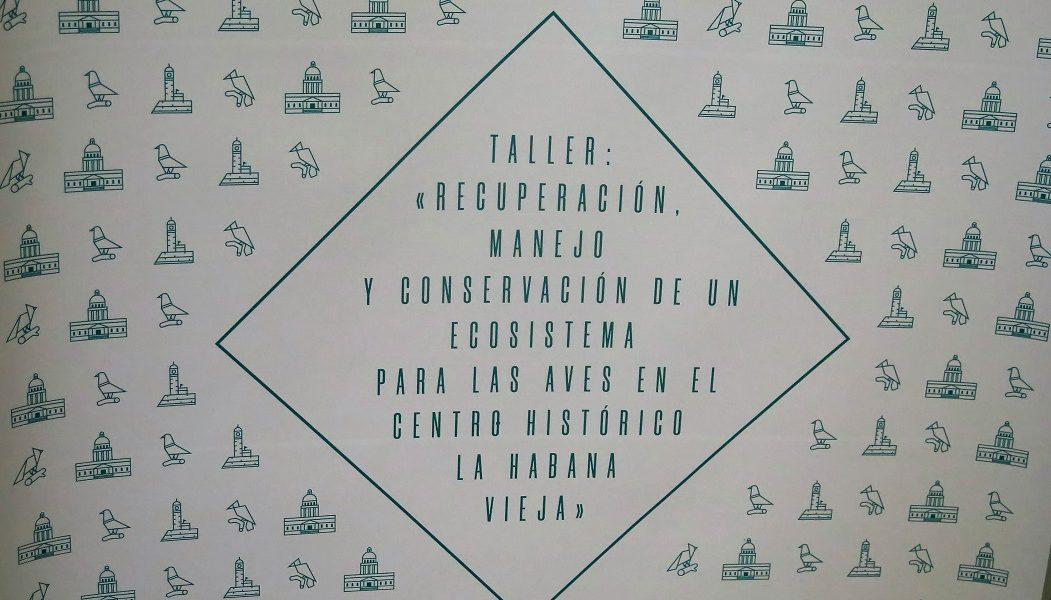 Recuperación, manejo y conservación de un ecosistema para las aves en el Centro Histórico La Habana Vieja